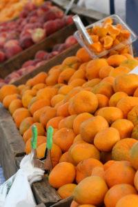 Santa Rosa Farmers Market