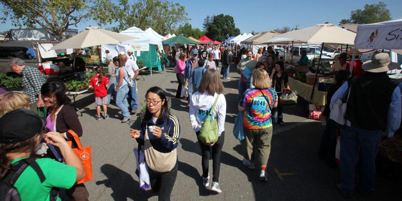 Farm Markets Tuesday through Sunday in Sonoma County