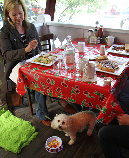 Dog-Friendly Sonoma County Restaurants