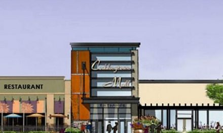 Cheesecake Factory rumors persist as Sakura Goes Dark at Coddingtown