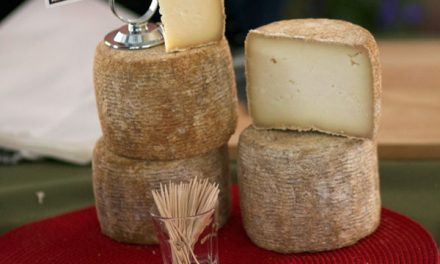 Upcoming Artisan Cheesemakers of the North Bay