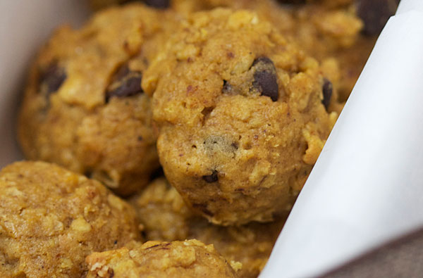 Pumpkin Oatmeal Chocolate Chip Cookie Recipe