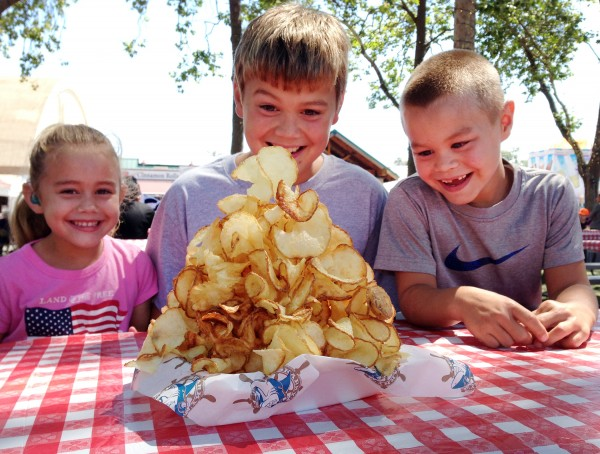 Sonoma County Fair 2013 food