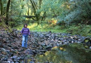 Janet Tonkin walks along Santa Rosa Creek in Hood Mountain Regional Park, near Santa Rosa on Tuesday, October 1, 2013. (Christopher Chung/ The Press Democrat)