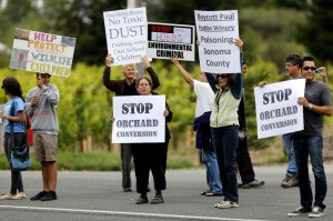 Protesters of the Watertrough Rd orchard conversion picket outside Paul Hobbs Winery in Sebastopol, California on Monday, July 29, 2013. (BETH SCHLANKER/ The Press Democrat)