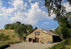 Sandra Jordan converted a large barn on her Windsor property in to an art gallery and reception venue for the Santa Rosa Symphony among others. (Kent Porter / Press Democrat) 2013