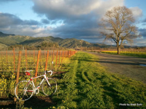 Courtesy of Calistoga Visitors Bureau
