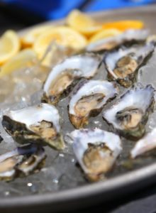 Fresh raw oysters on ice at Hog Island Oyster Company, in Marshall. (Christopher Chung/ The Press Democrat)