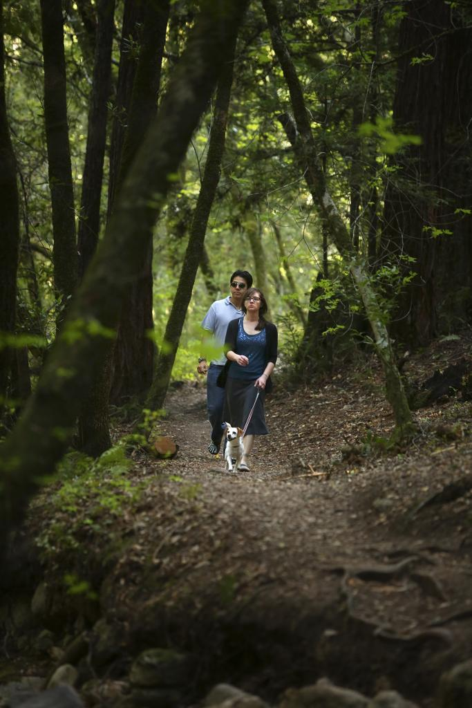 Nick Lopez, left, and Bridget Laurent hike along the trails of Bartholomew Park in Sonoma.