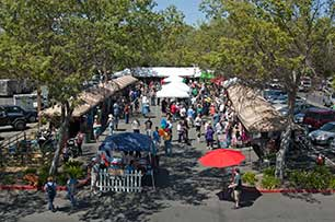 Oliver's Markets will present the Fourth Annual Taste of Sonoma on April 26, 2014