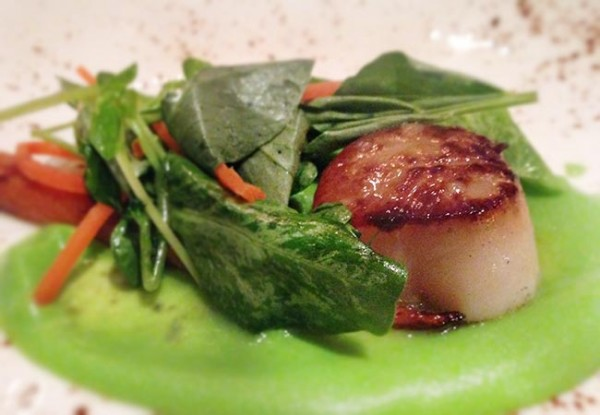 Scallop with Iberico lardo at Library at Chalkboard in Healdsburg. Photo Heather Irwin