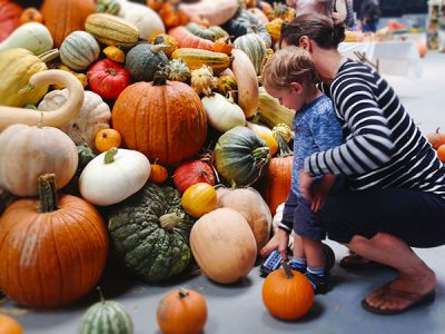 Learn to Cultivate Worm Poop and Guerrilla Garden at Santa Rosa's Heirloom Expo