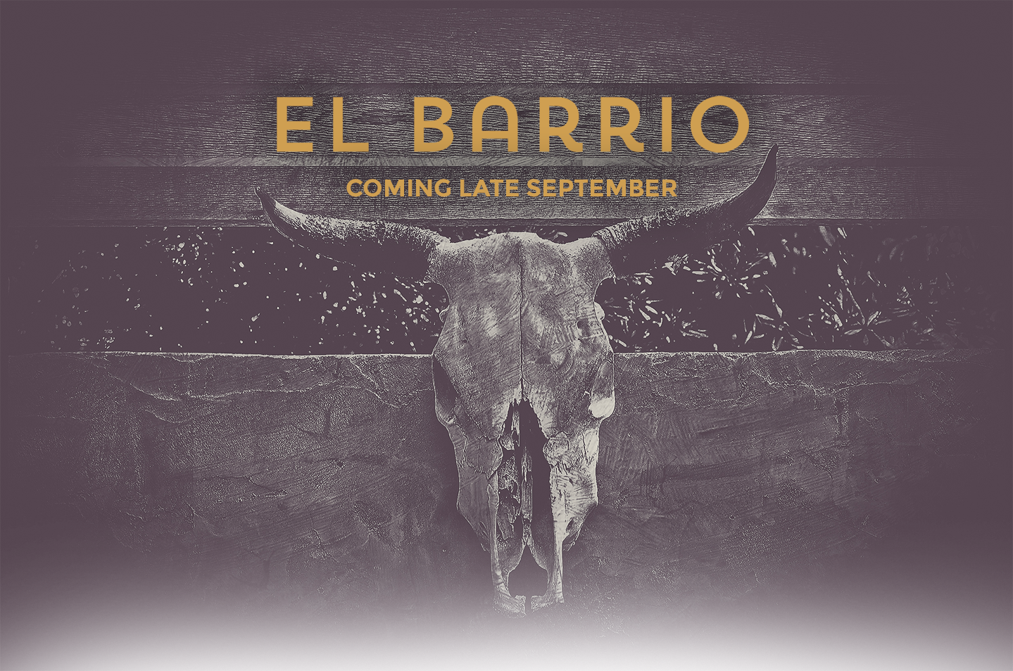 El Barrio Mexican Modern Cocktail Bar will open in Guerneville in September