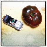 You Say Tomato: Sonoma's Bounty