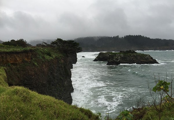 Winter on the Mendocino Coast. Photo Heather Irwin, copyrighted 2014