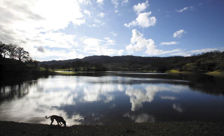 Lake Suttonfield, Glen Ellen. (photo by Crista Jeremiason)