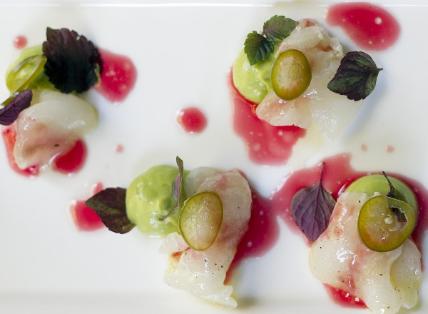 Halibut Ceviche with Prickly Pear reduction, avocado at Harvest Table in St. Helena