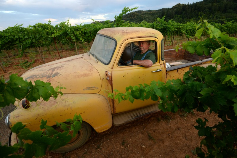 Rich Mounts, 68, of Mounts Family Winery sitting in his 1954 Chevrolet on one of his vineyards in Healdsburg, California. July 1, 2015. (Photo: Erik Castro