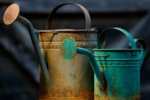 Antique watering cans at Urban Refind in Sonoma, California on Thursday, October 15, 2015. (Alvin Jornada / The Press Democrat)