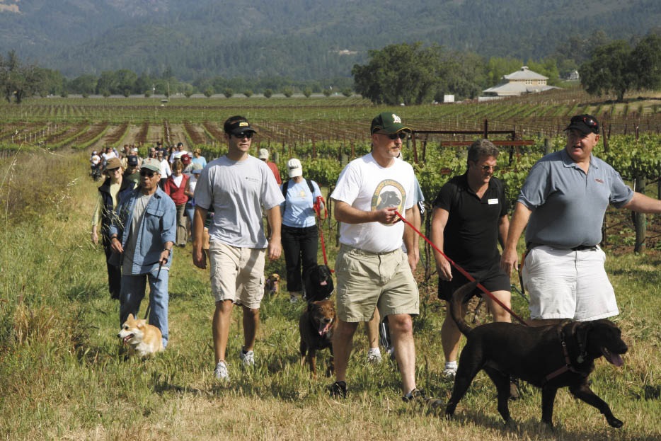 Pinot and Pooches - Sonoma County for Pets