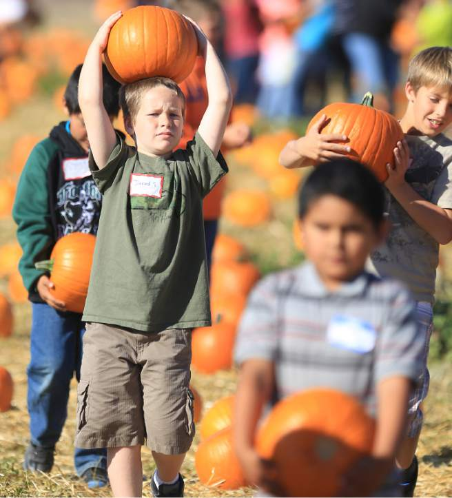 Jared Sager follows his classmates at Tolay Lake Regional Park in 2013 (Kent Porter / PD File).