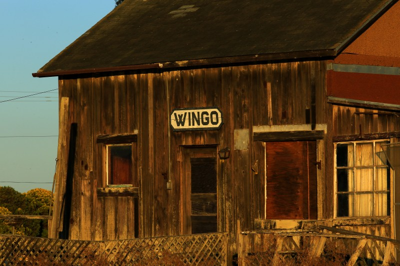 JB0918_WINGO_SIGN_747774