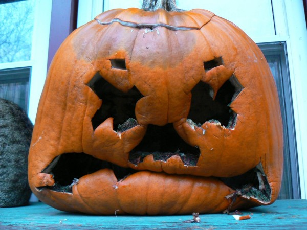 Don't be that guy. Recycle your pumpkin. (From My Crappy Neighbor