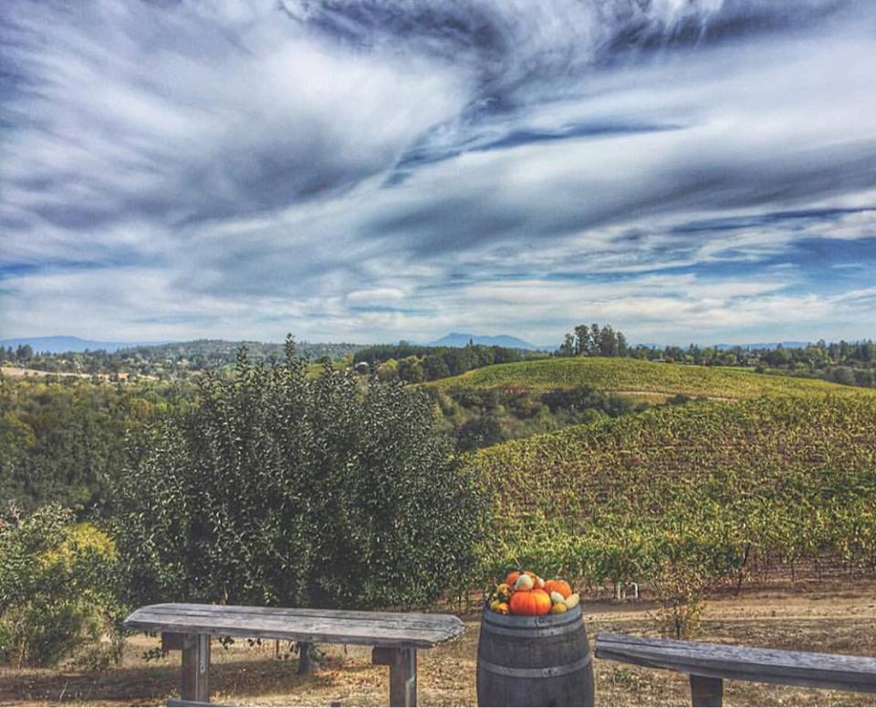 Iron Horse Vineyards: No fancy tasting room, just outside with a plank on 2 barrels, you sip on sparkling wine and watch the amazing view of the valley. No better way to start a wine tour. (Courtesy / Iron Horse Vineyards)