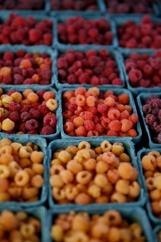 Get up close and personal with Sonoma County's bounty at seasonal and year-round markets from Healdsburg to Occidental. Santa Rosa has two year-round markets with everything from artisan cheese and locally-caught seafood to sushi burritos and bone broth. (Raspberries from the Sebastopol Berry Farm, BETH SCHLANKER/ The Press Democrat)