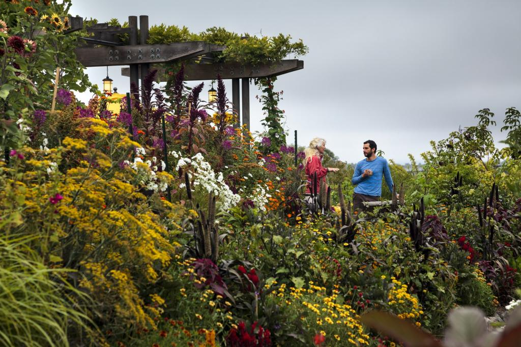 Sit among golden sunflowers and other beautiful flowers as you sip your wine at Lynmar Winery in Sebastopol. Away from the tourists crowds, you can find your own bubble of peace in these lovely gardens. (Chris Hardy / The Press Democrat)