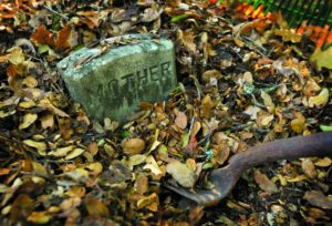 Volunteers dig carefully through leaves, weeds and undergrowth to uncover old burial sites and their grave markers.