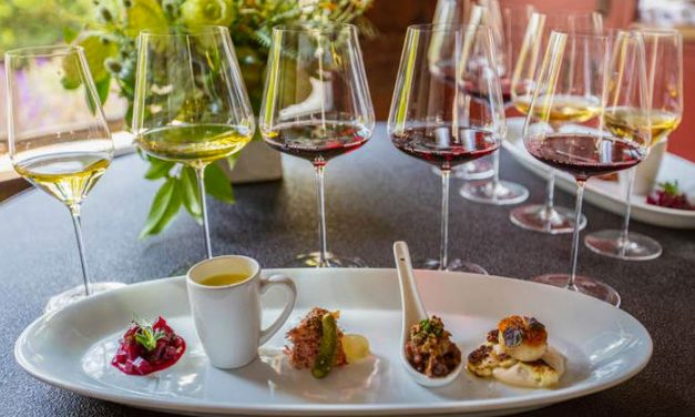 Best Food and Wine Pairing Experiences in Sonoma