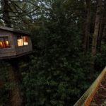 Salmon Creek Ranch, a working ranch with a treehouse that will soon be rented out. Rope bridges leading to the treehouse. (Chris Hardy)