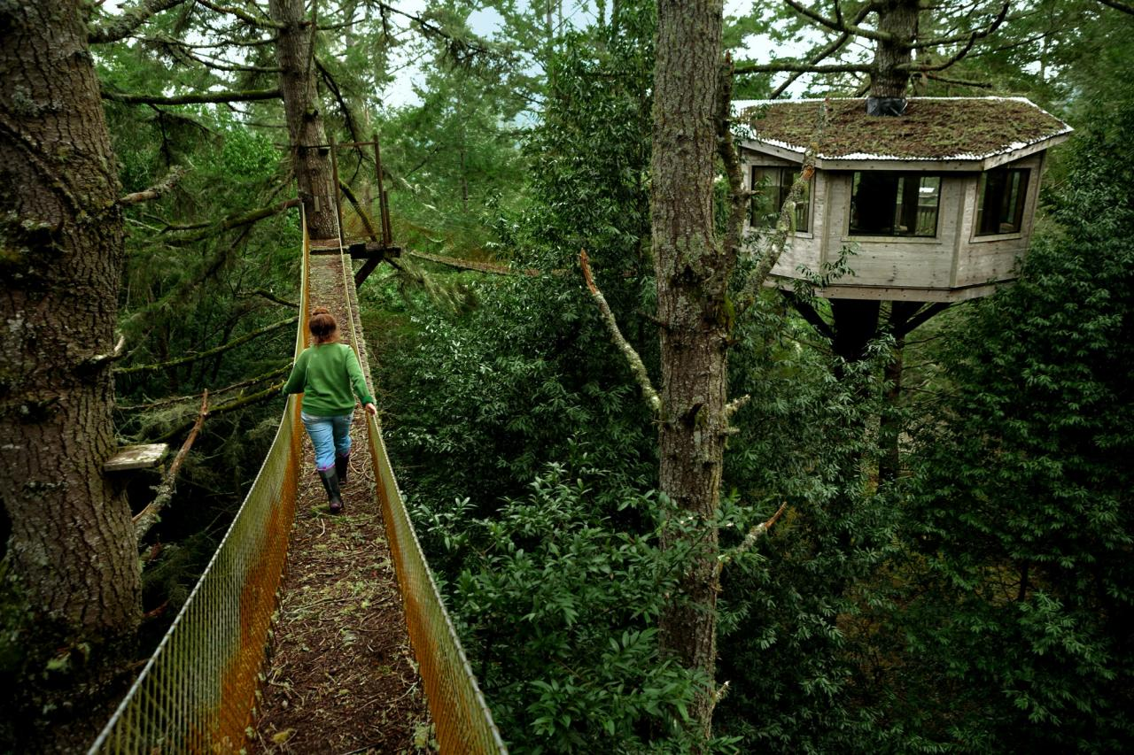 Salmon Creek Ranch, a working ranch with a treehouse that will soon be rented out. Lesley Brabyn walks across one of the rope bridges to the tree house. (Chris Hardy)