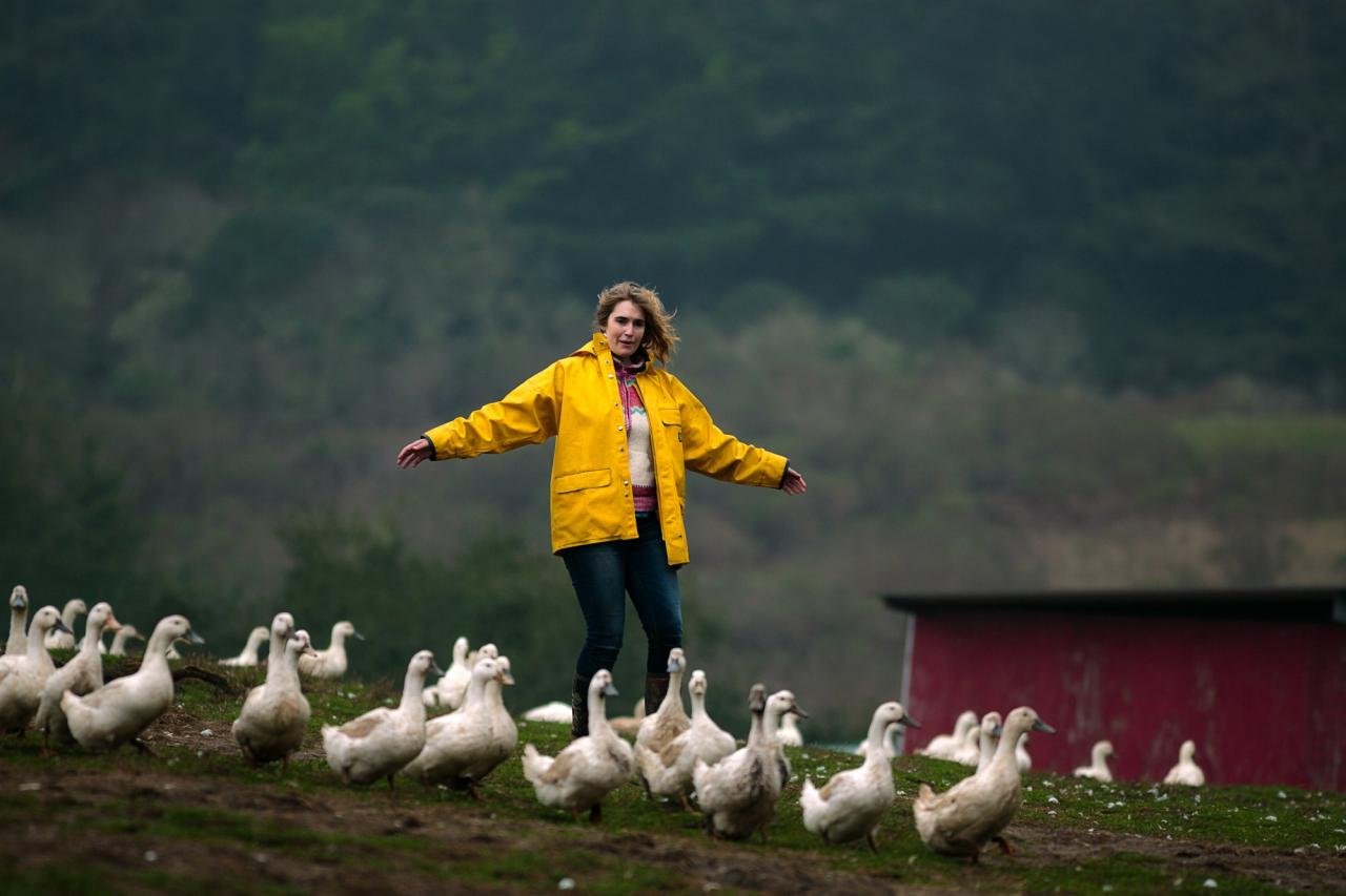 Salmon Creek Ranch, a working ranch with a treehouse that will soon be rented out. Jocelyn Brabyn herding ducks. (Chris Hardy)