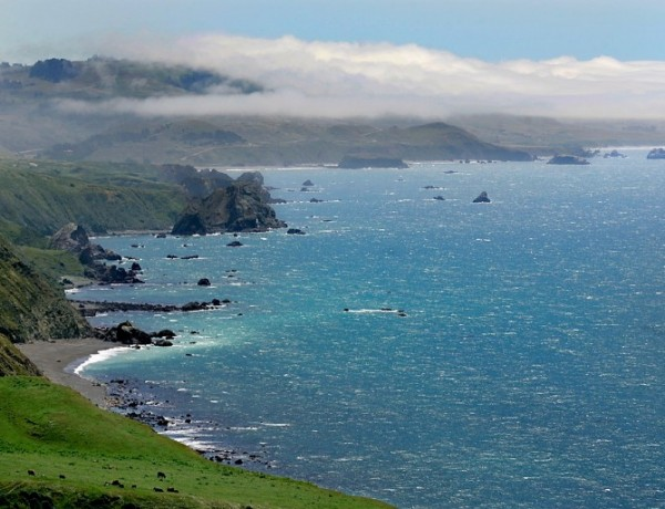 The Sonoma County Coast looking toward Goat Rock from Highway 1. (Kent Porter, 2009)