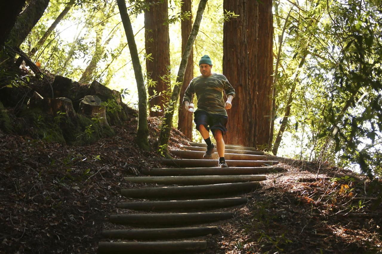 Stair-stepped hillsides help hikers and runners navitage Bartholomew Park's undulating trail. (Conner Jay/The Press Democrat)