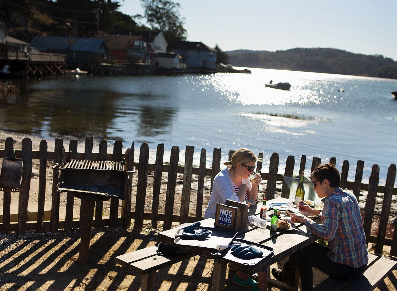Hog Island Oyster Farm Picnic Outrage Sonoma Wine