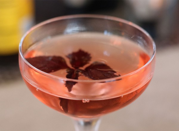 Plum wine cocktail with shiso at Ramen Gaijin (heather irwin)