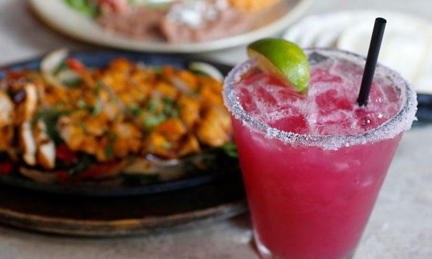 Margarita Madness for Sonoma County Cinco de Mayo!