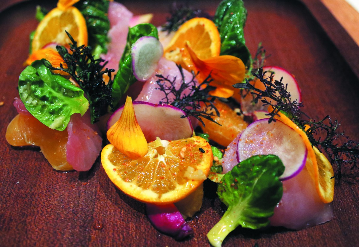 Pacific yellowtail with tatsol, ginger, citrus and togarishi at SHED Cafe' in Healdsburg (photo by Heather Irwin)