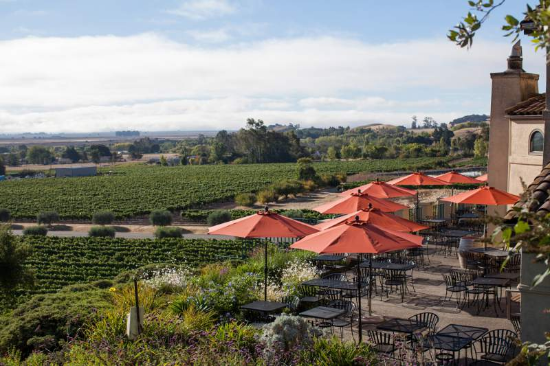 6. Mother's Day Bubbles & BBQ: Spoil Mom with slow-cooked barbecue, sparkling wines and live music, noon-2 p.m. Sunday, May 8, Gloria Ferrer Caves & Vineyards, Sonoma. $45-$70. 933-1917, gloriaferrer.com. (Photo / Paige Green)