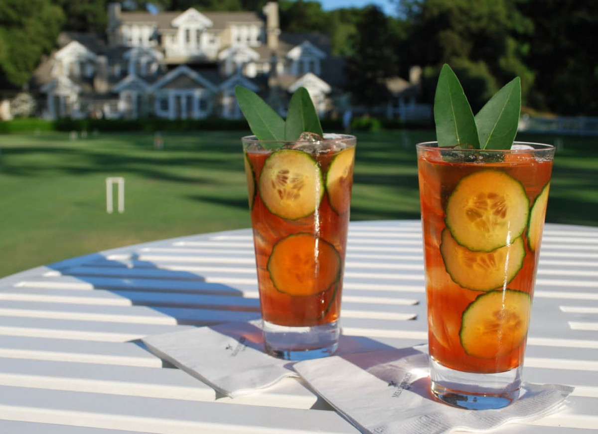 Pimms3_opt