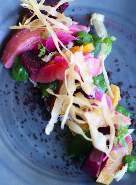 Beet salad with cocoa sable, smoked parsnip, fines herbes at  Spoonbar restaurant in Healdsburg on 5/15/15 . Copyright Heather Irwin