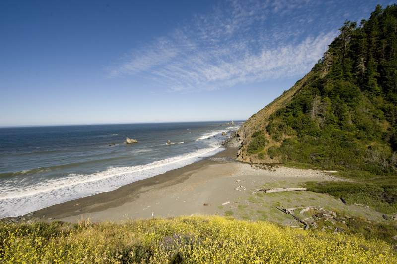 lost-coast-trail-3
