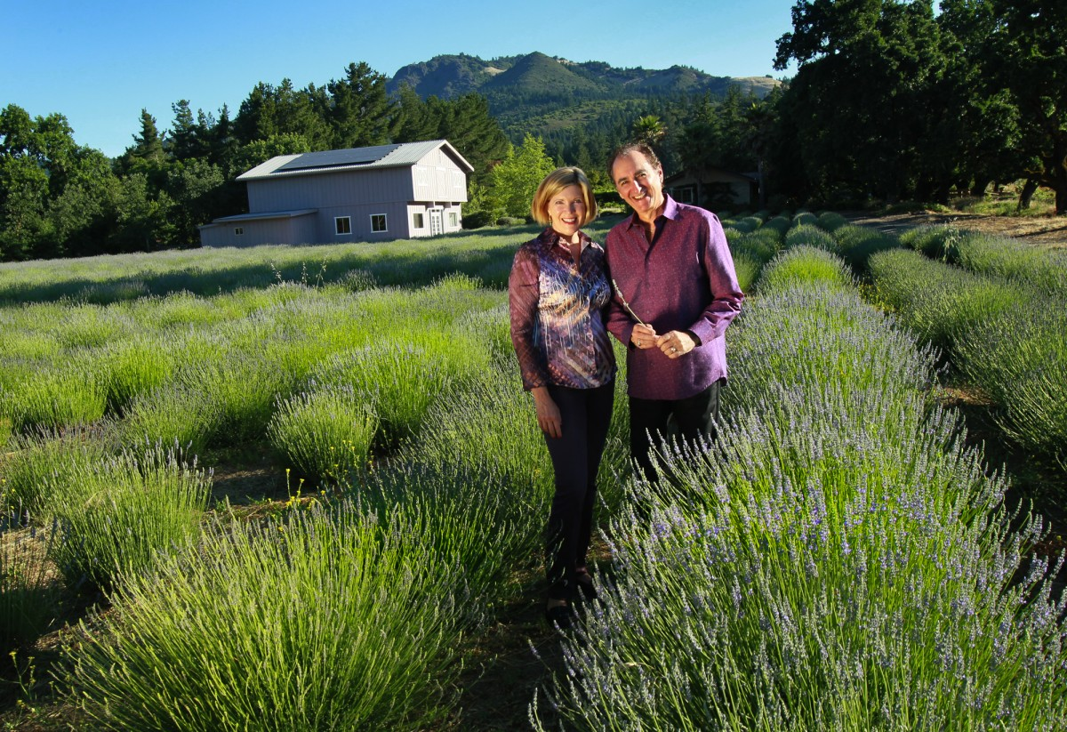 Rebecca and Gary Rosenberg, owners of Sonoma Lavender in Kenwood, in their garden of Provence and Grosso lavender. (John Burgess / The Press Democrat)
