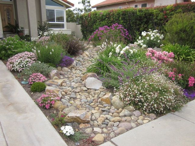 Create a beautiful drought resistant front yard for Drought tolerant yard