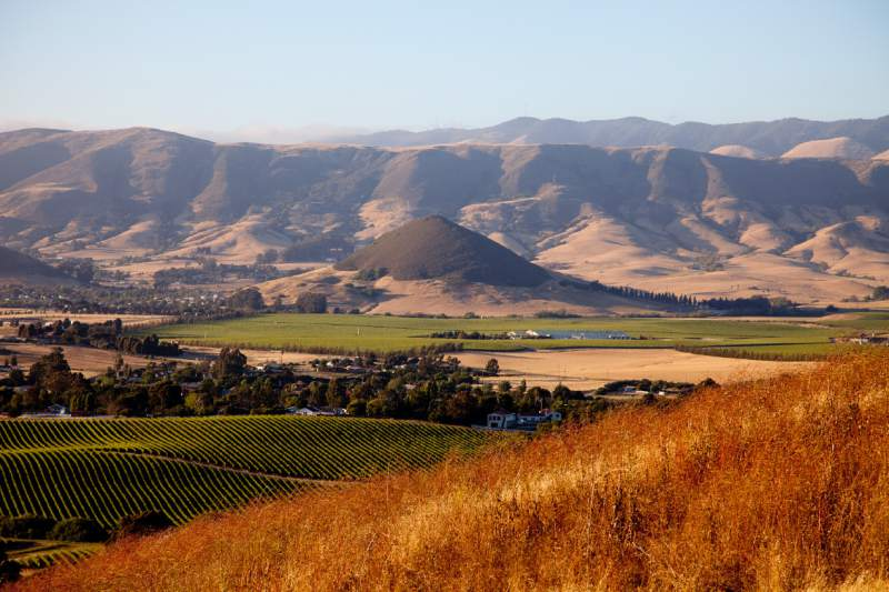 The San Luis Obispo wine region has a Mediterranean climate similar to regions of France that produce storied wines. (SLO Wine Country)
