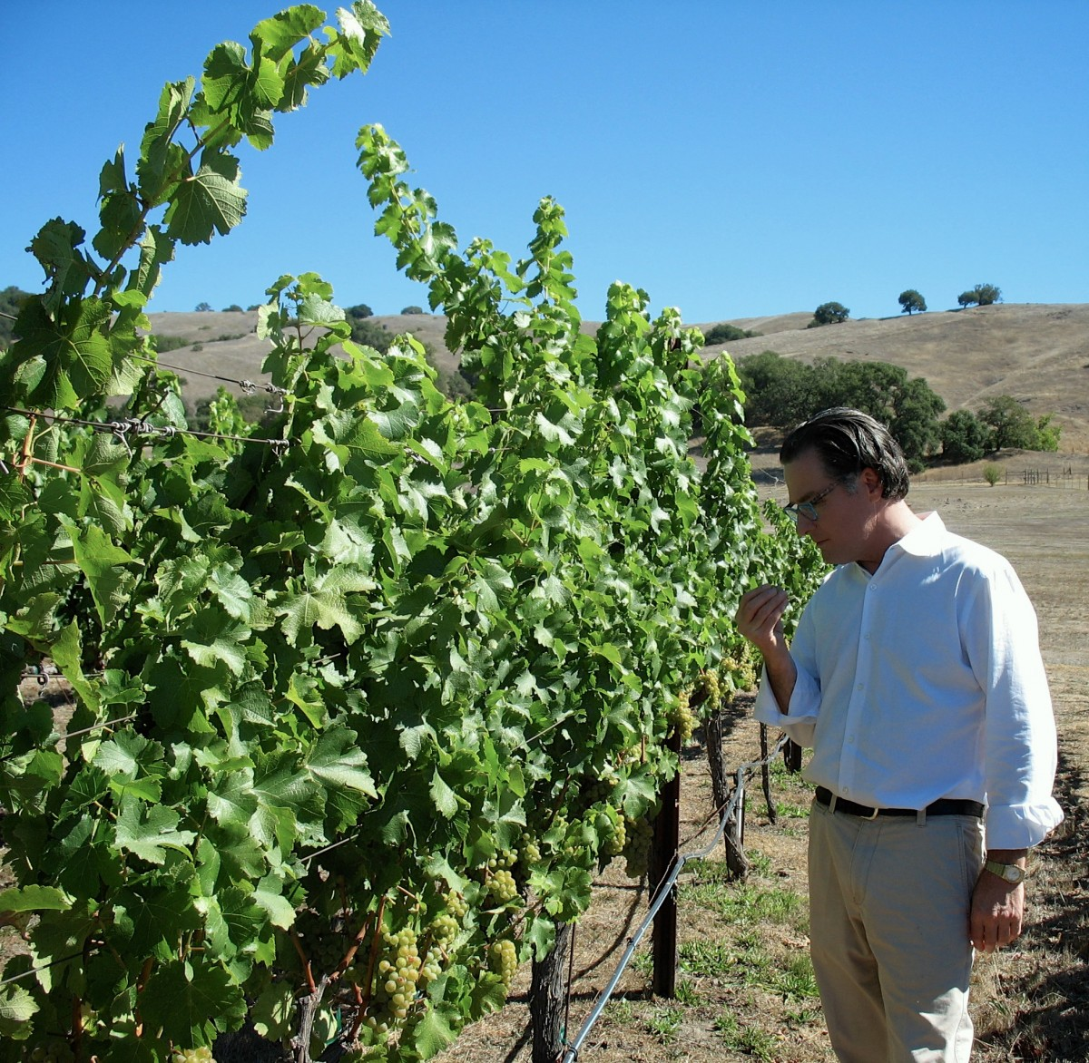 "Vance Rose - vintner, chef and pop-up gourmet dinner host - teamed up with David Grieve in 2008. Eight vintages later, they've established themselves as producers of premier California Sauvignon Blanc and ""Double Eagle"" Bordeaux blend. (Photo Courtesy of Grieve Family Winery)"