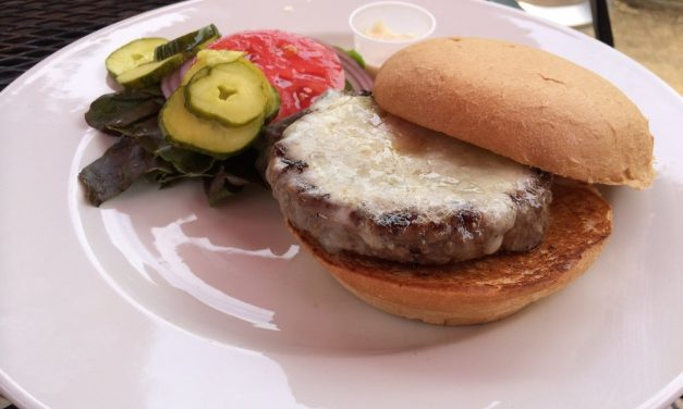 HBG in Healdsburg: Best burger in America?